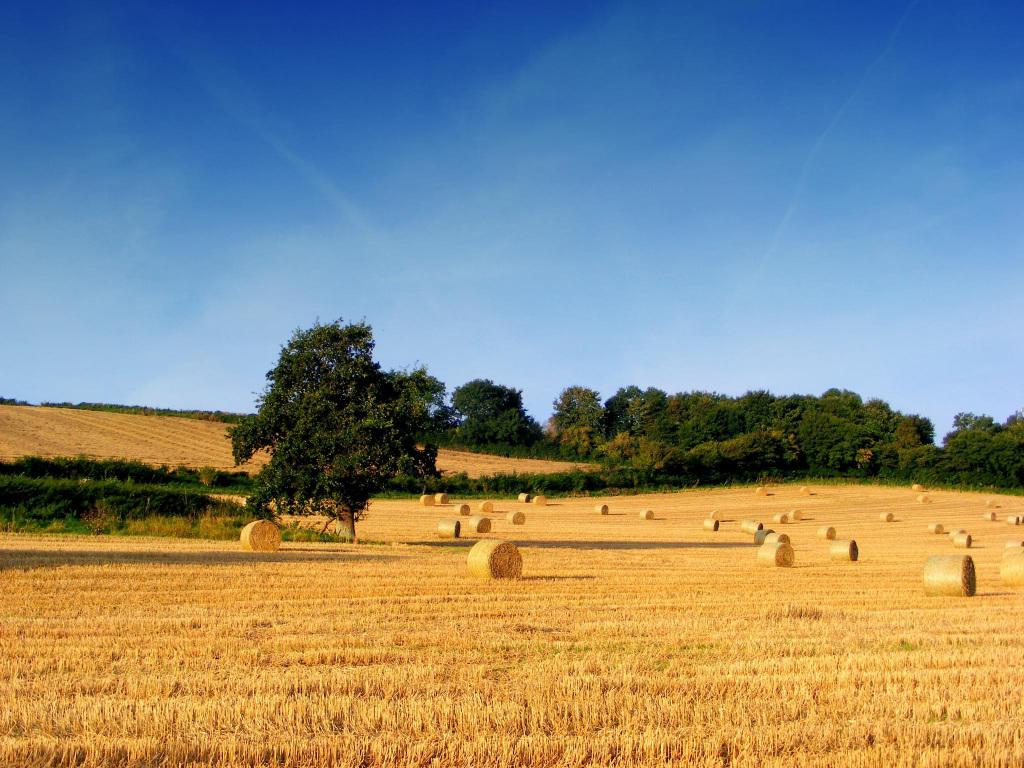 agricoltura-2